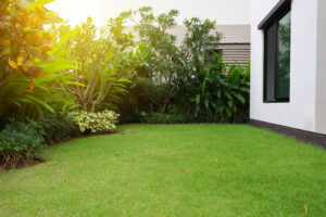 landscaping services in texas