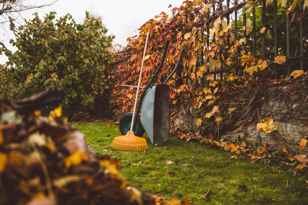 landscape maintenance - Green Earth Services of Texas