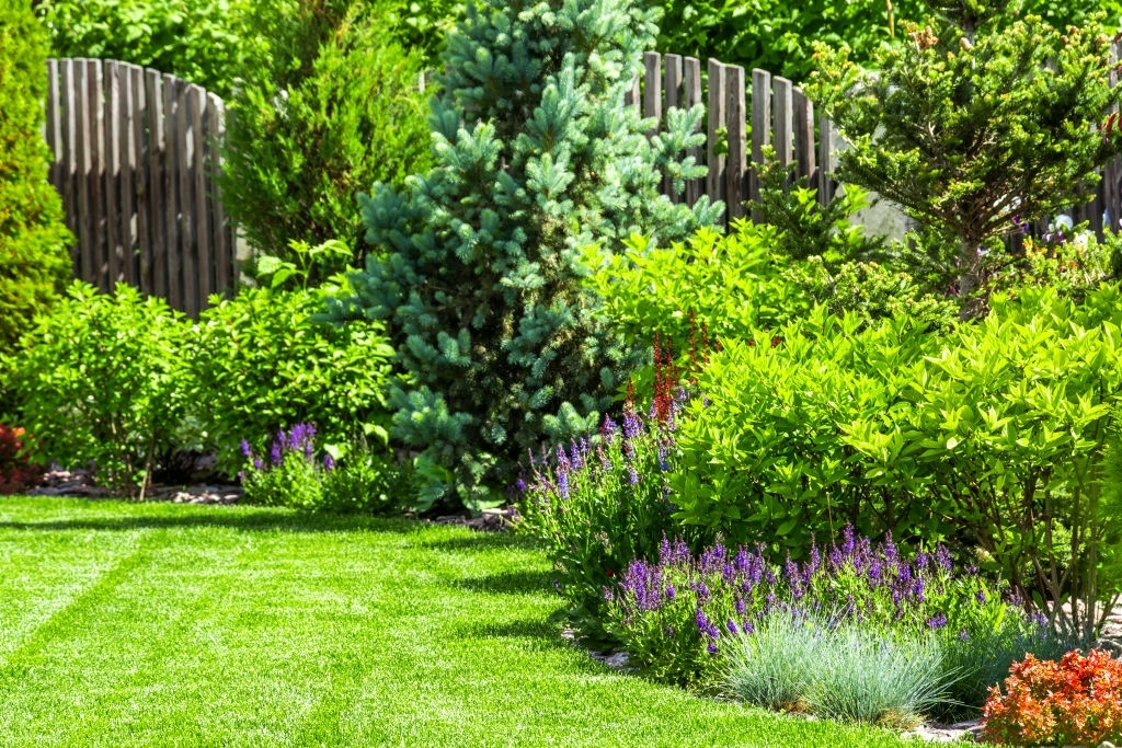 landscaping services in keller tx
