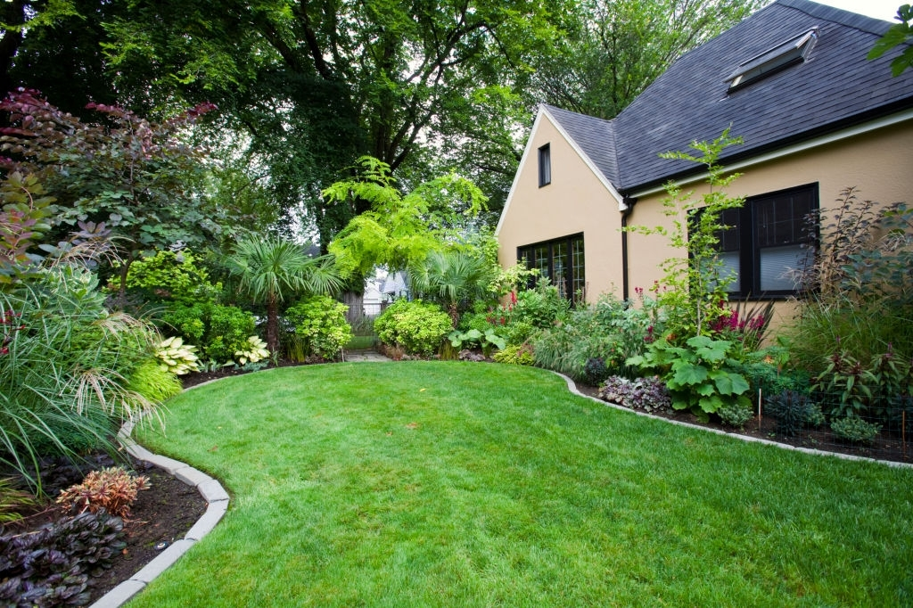texas professional landscaping services