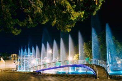 Green Earth Water Fountain