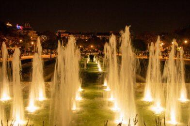 Green Earth Water Fountain (7)